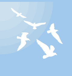 White gulls silhouettes concept vector