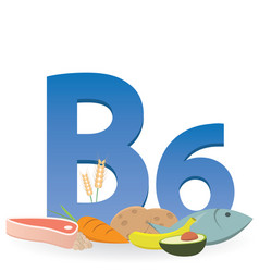 Foods rich in vitamin b6 vector