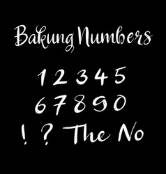 Bakung numbers alphabet typography vector