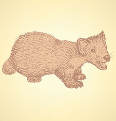 Sketch cute marten in vintage style vector