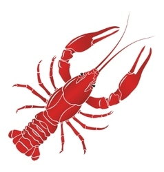 Boiled red crayfish crawfish vector