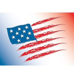 Flag of america color vector