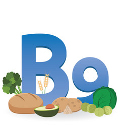 Foods rich in vitamin b9 vector