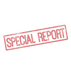 Special report red rubber stamp on white vector
