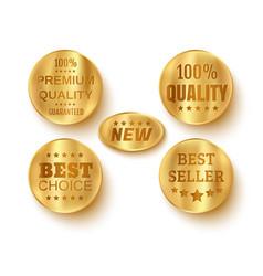 premium web golden banners vector image