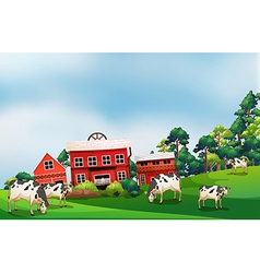 Cows in the farm vector