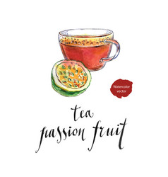 Tea from passion fruit vector