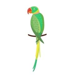 Cartoon parrot bird vector image
