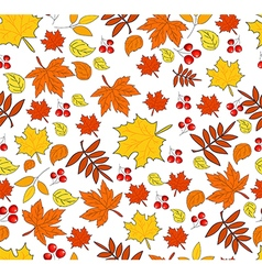 Pattern with autumn leaves on a white background vector image