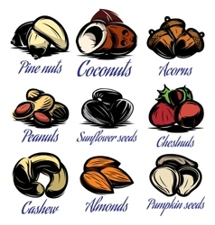 Set symbols patterns of different colored seeds vector