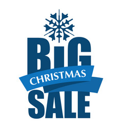 big christmas sale inscription vector image vector image