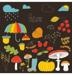 Hand drawn doodle autumn icons set vector