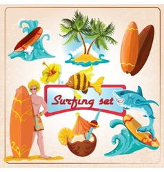 Surfing elements set vector image vector image