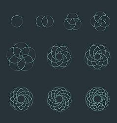 Circle contour various sacred geometry set vector