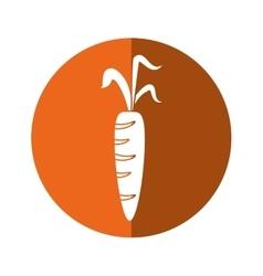 Fresh carrot vegetable healthy icon orange circle vector