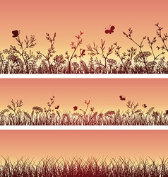 wild herbs and flowers silhouettes vector image vector image