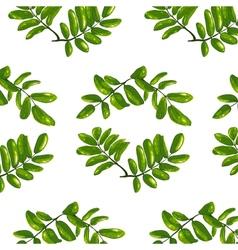 Rhombic Leaves Seamless Pattern vector image