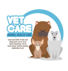 Veterinary pet clinic logo vector