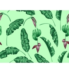 Seamless pattern with banana leaves decorative vector