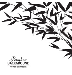 Bamboo ink drawing vector image vector image