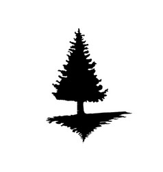 The black silhouette of a pine tree on an isolated vector