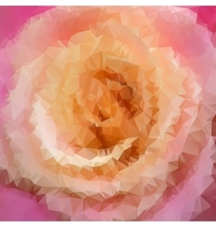 Beautiful rose closeup vector