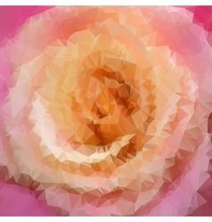 beautiful rose closeup vector image