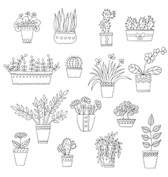 Cute hand drawn flowers in the pots vector
