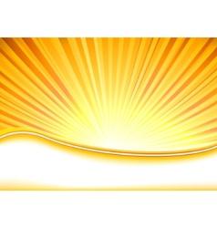 summer banner full of shine vector image