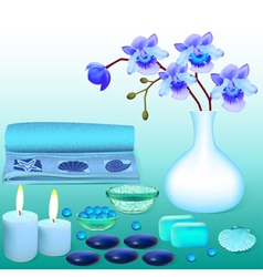 Background for spa with flowers salt vector