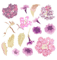 Hand drawn flowers set vector