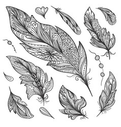 sketch feather set vector image