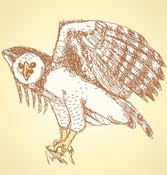 Sketch harpia bird head in vintage style vector