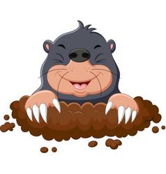 Cartoon cute mole vector