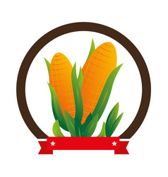 Colorful circular emblem with corn vegetable vector