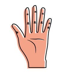 Nice hand with all fingers and palm vector