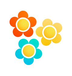 Colorful marguerite flowers vector