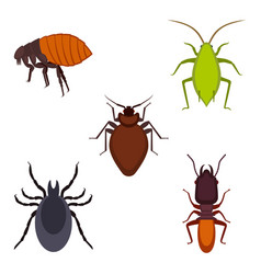 collection of colorful bug icons on vector image vector image