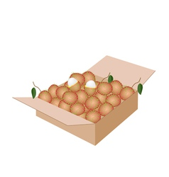 Fresh ripe and juicy rambutans in a shipping box vector