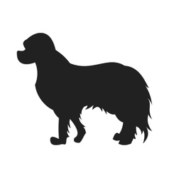 Spaniel Black Silhouette vector image vector image