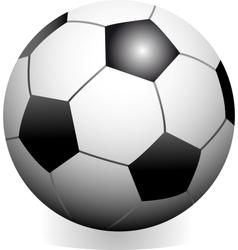 soccer game ball vector image