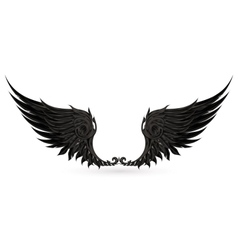 Wings black vector