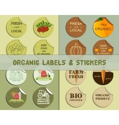 Organic labels set vector