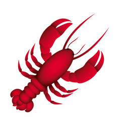 Red lobster icon image vector