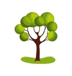 Tree plant icon vector
