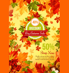 Autumn sale discount offer banner with fall leaf vector