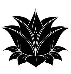 Lotus flower vector