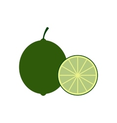 Lime icon flat style vector