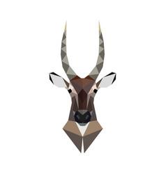 antelope portrait polygonal style wild animal vector image vector image