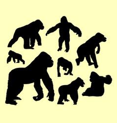 gorilla wild animal silhouette vector image vector image